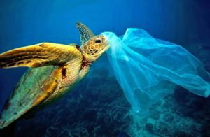 ocean-pollution-001